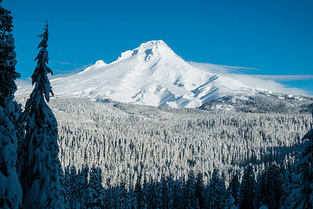 Mt. Hood, winter, Oregon Mount Hood covered in winter snow, Oregon mt hood stock pictures, royalty-free photos & images