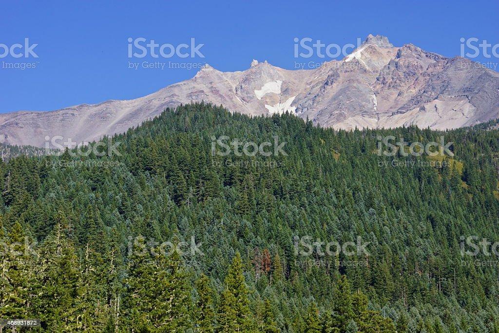 Mt. Jefferson Alpine Stone stock photo