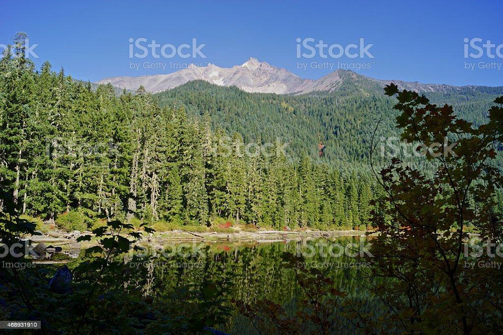 Mt. Jefferson Autumn stock photo