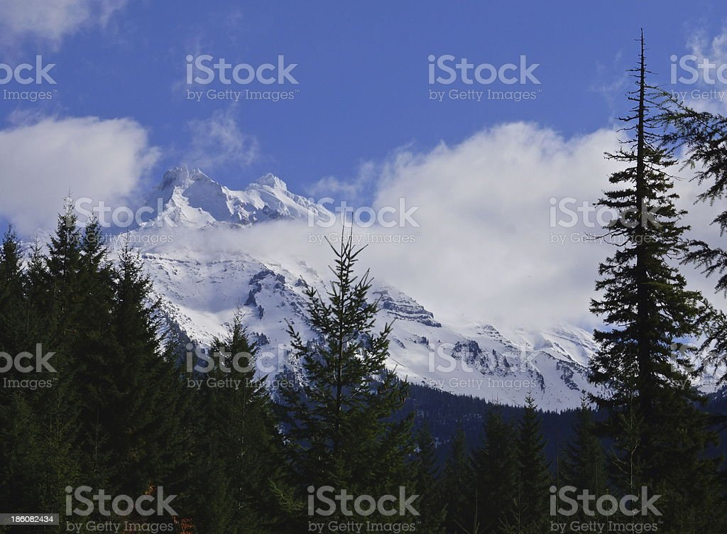 Mt. Jefferson Wilderness stock photo