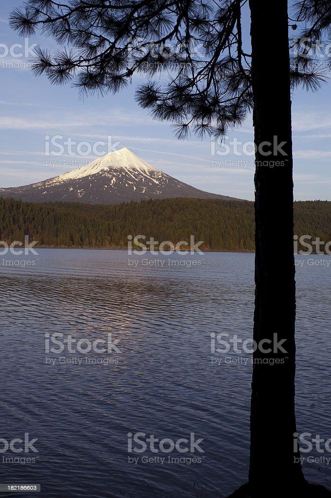Mt Mcgloughlin Willow Lake Pine Tree Oregon Rural Country royalty-free stock photo