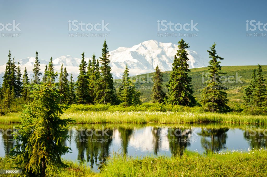 Mt. McKinley Reflected stock photo
