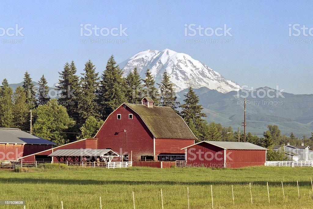 Mt Rainier and Barn royalty-free stock photo