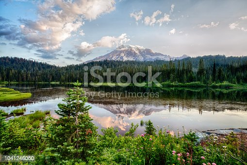 Mt Rainier and Reflection Lake at sunrise and wildflowers blooming