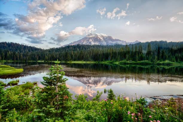 mt rainier and reflection lake at sunrise and wildflowers blooming - wybrzeże północno zachodnie pacyfiku zdjęcia i obrazy z banku zdjęć