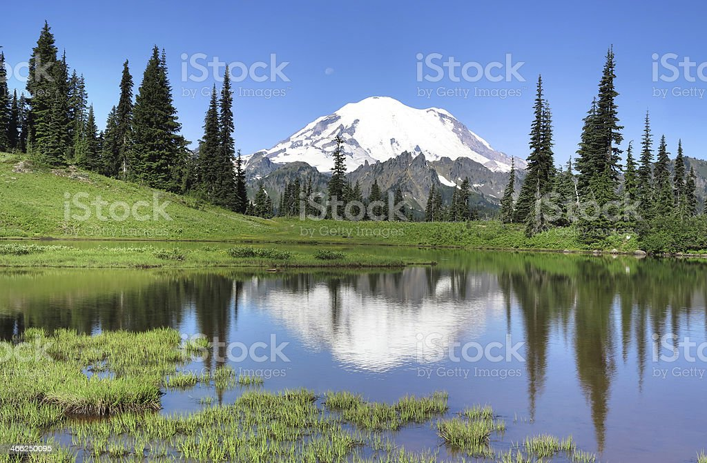 Mt. Rainier and Tipsoo Lake royalty-free stock photo