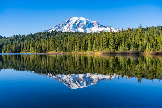 Mont Rainier du Lac Reflection Lake - Photo