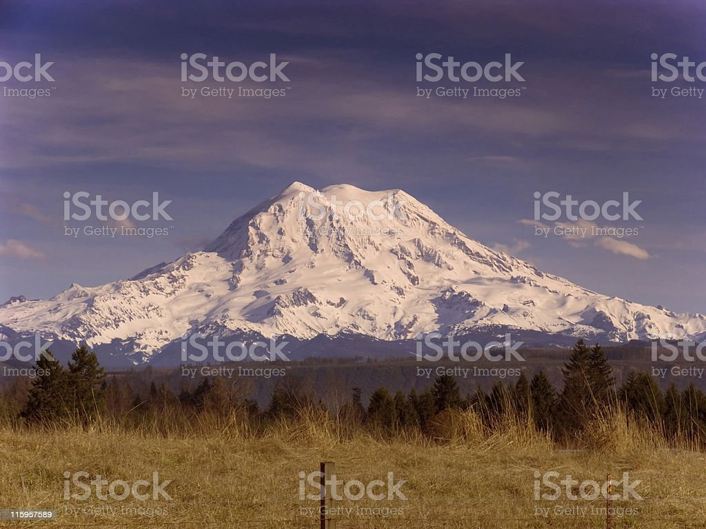 Mt Rainier - Graham, Washington royalty-free stock photo