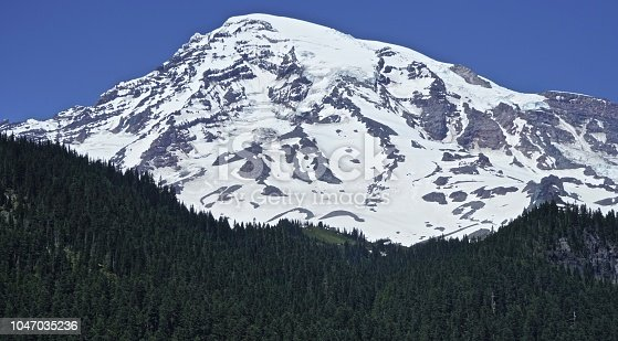 Central Washington's Cascade Range. Mt. Rainier National Park. Van Trump Park Area.