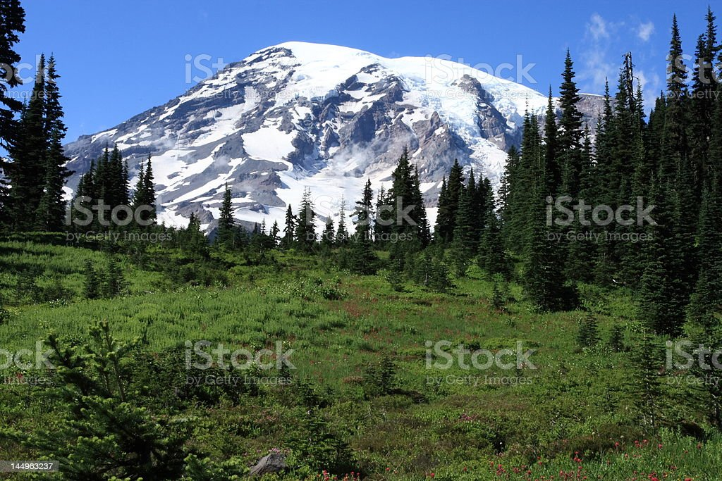 Mt Rainier (Pls see my other nature photos) royalty-free stock photo
