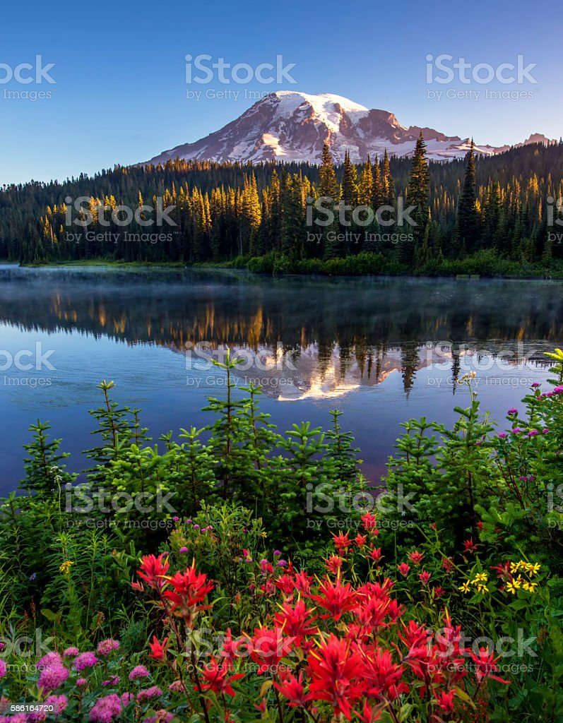 Mt Rainier Reflected in Reflection Lake. stock photo