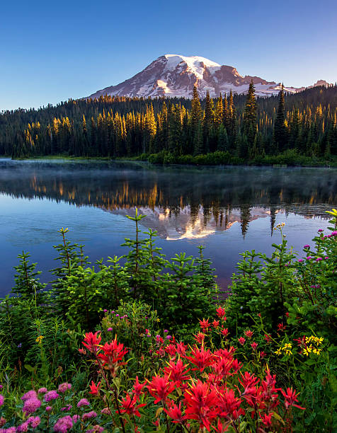 Mt Rainier Reflected in Reflection Lake. - foto stock