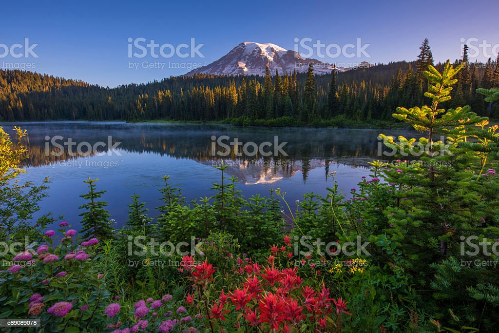 Mt Rainier Reflected in Reflection Lake stock photo