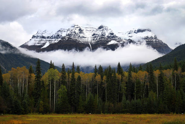 Mt Robson in Autumn, Fall. stock photo