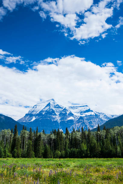 Mt Robson in the Canadian Rocky Mountains of British Columbia, Canada stock photo