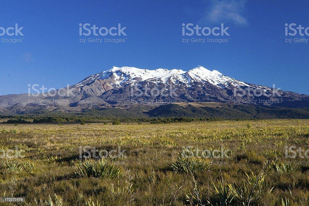 Mt. Ruapehu, New Zealand stock photo
