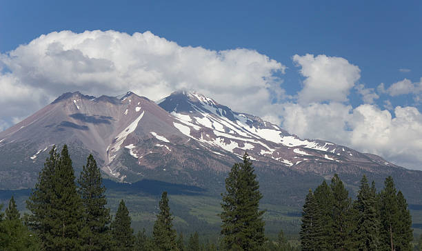 mt. shasta summer - ccsccs7 stock pictures, royalty-free photos & images