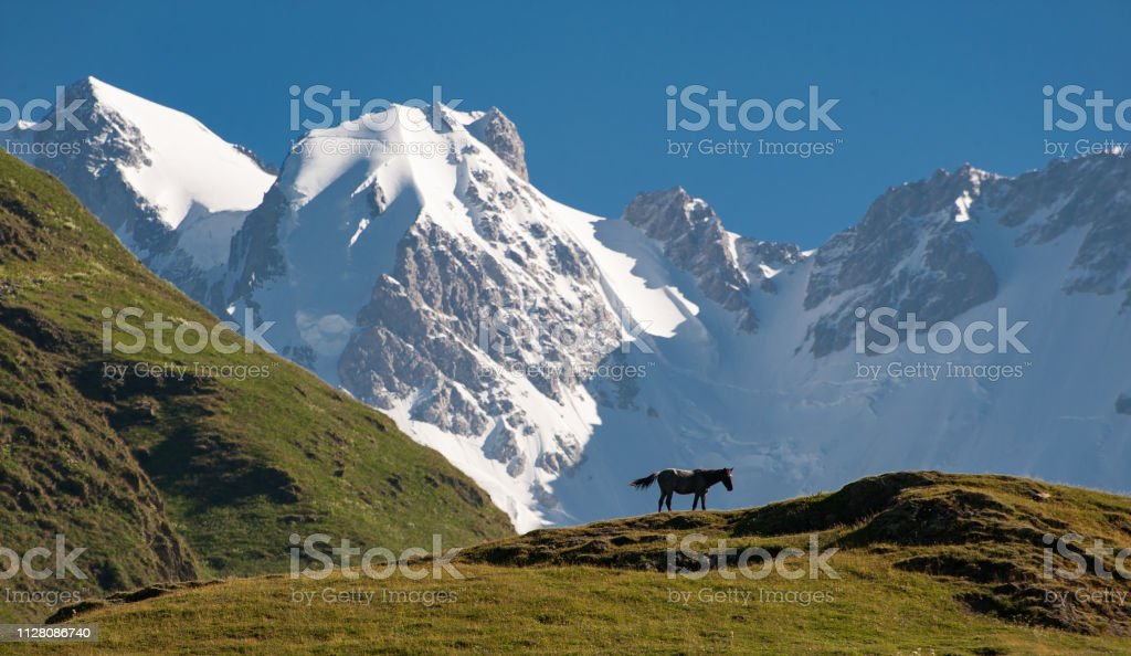 Mt Shkhara, Georgia Caucasus, from Ushguli stock photo