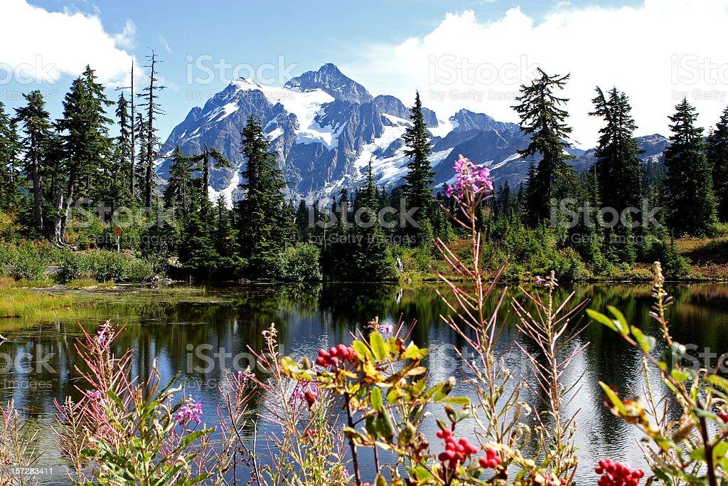 Mt Shuksan stock photo
