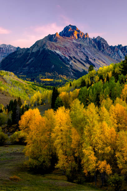 Mt Sneffels Sunset in the Fall Season Sunset Alpine Glow on Mt Sneffels with Golden Aspen in the Valley san juan mountains stock pictures, royalty-free photos & images