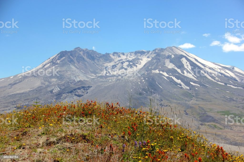 Mt St Helens At The Johnston Ridge Observatory In Washington