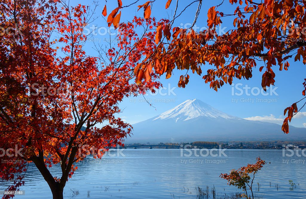 Mt.Fuji and Lake Kawaguchi in autumn stock photo