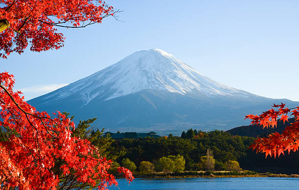 mt.fuji in autumn - tokyo japan stock photos and pictures