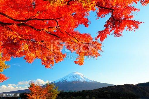 Mt.Fuji with maple