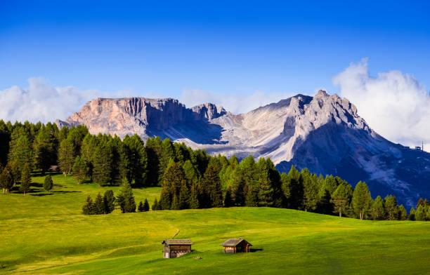 mt.langkofel bei sonnenuntergang, blick vom seiser alm, dolomiten, italien - seiser alm stock-fotos und bilder