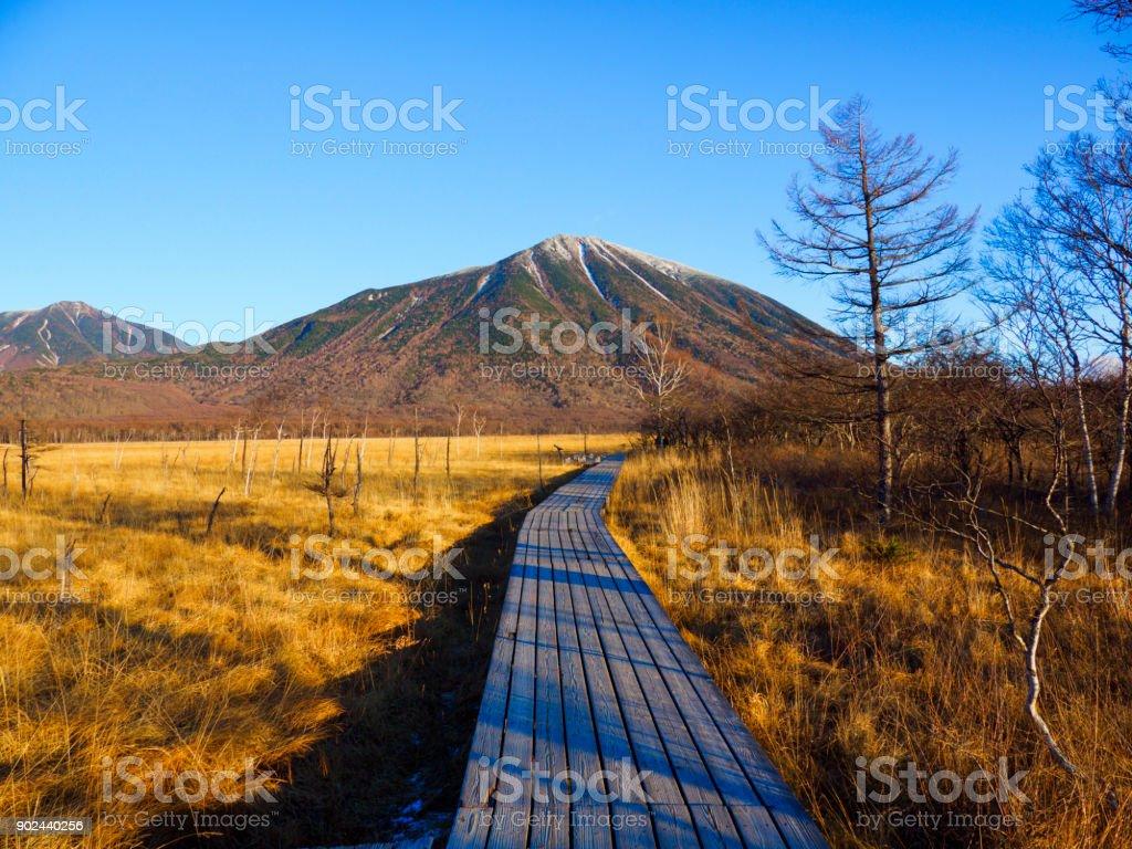 Mt.nantai and Senjogahara stock photo
