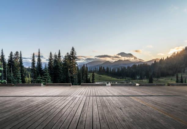 Mt.Rainier Nationalpark – Foto