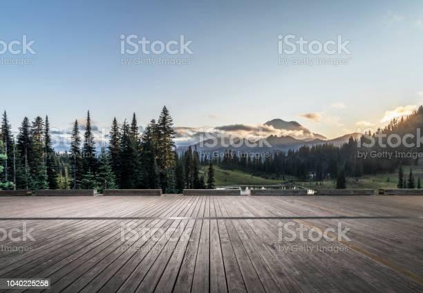 Photo of Mt.Rainier National Park