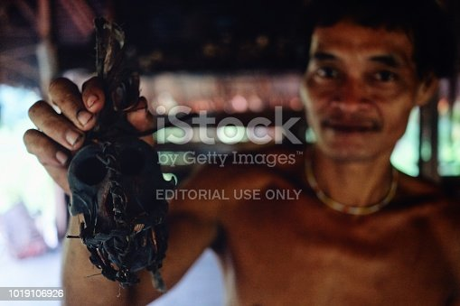 istock Muara Siberut, Mentawai Islands / Indonesia - Aug 15 2017: Tribal elder Toikots son Aman proudly presents his monkey skull which he keeps for protection 1019106926