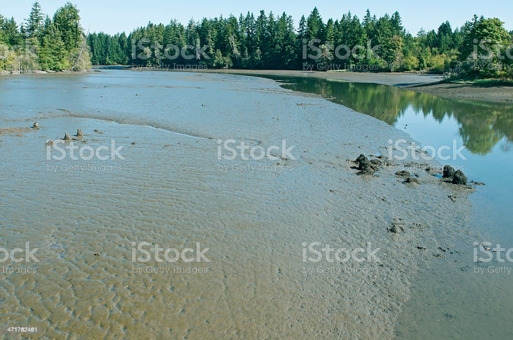 Mud Bay at southern extremity of Puget Sound in Washington royalty-free stock photo