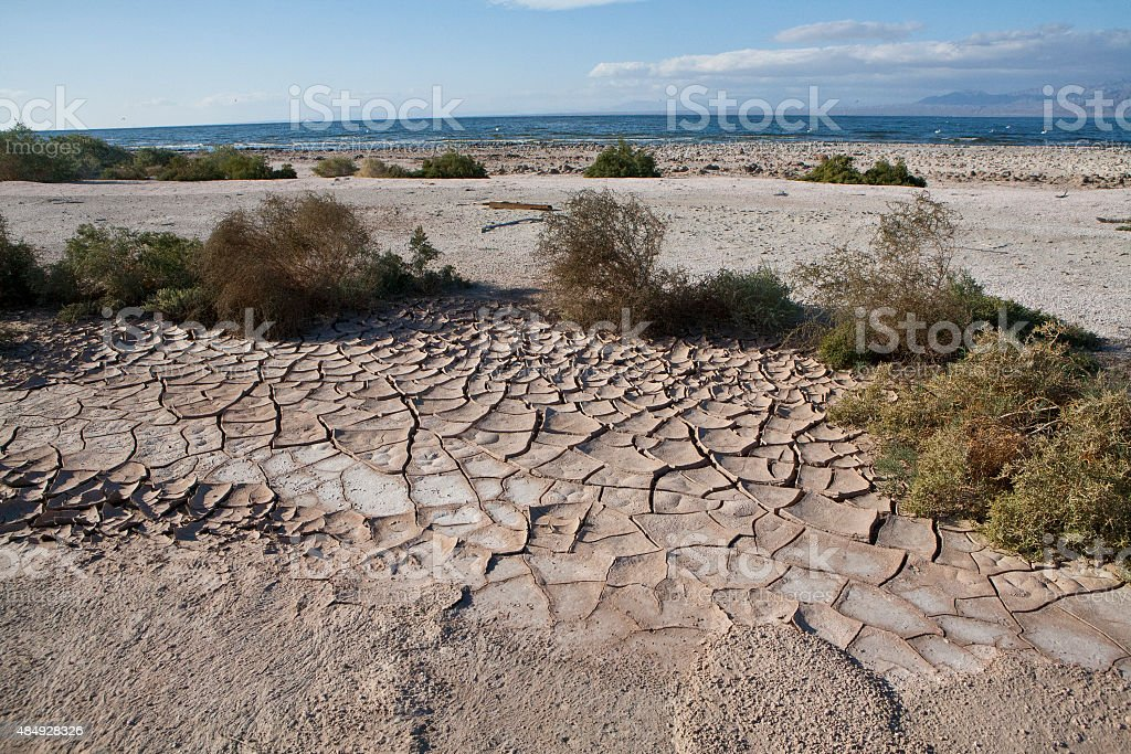Mud Crack stock photo