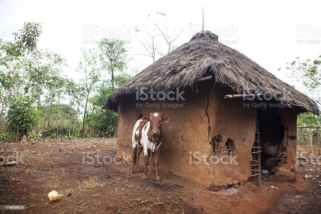 Mud Hut stock photo