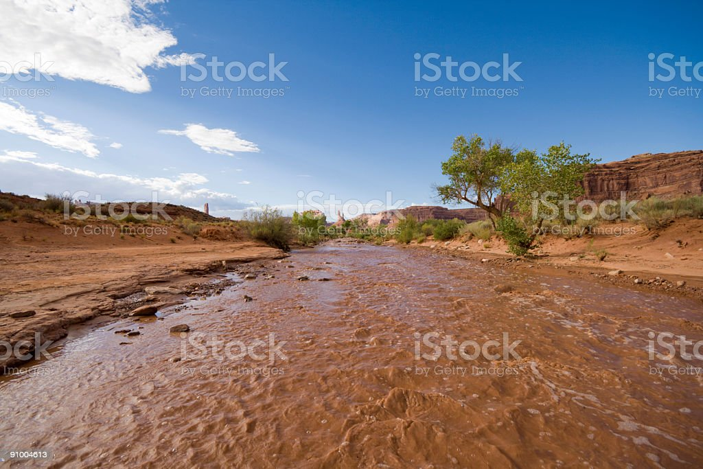 Mud river royalty-free stock photo
