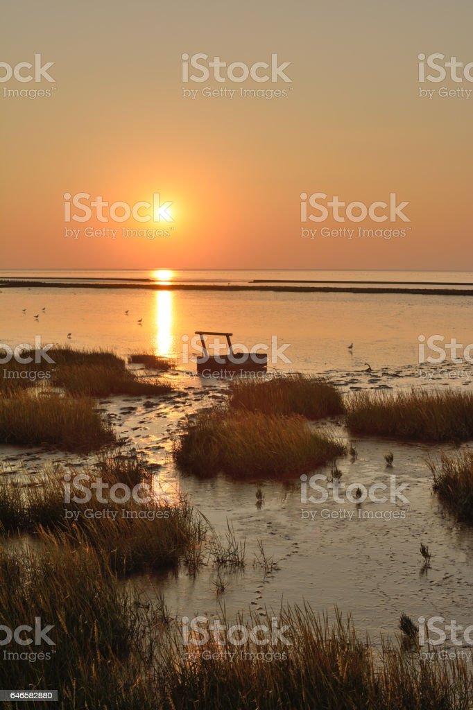 Mud Sled in wadden Sea,East Frisia,North Sea,Germany stock photo