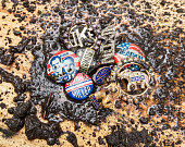 Catskill, NY, USA October 15, 2016  Mud splattered Republican Party campaign pins leading up to November 8, 2016 presidential election