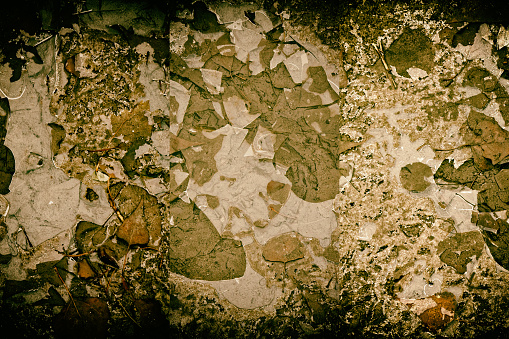 istock Mud texture or wet black soil as natural organic clay 983544616