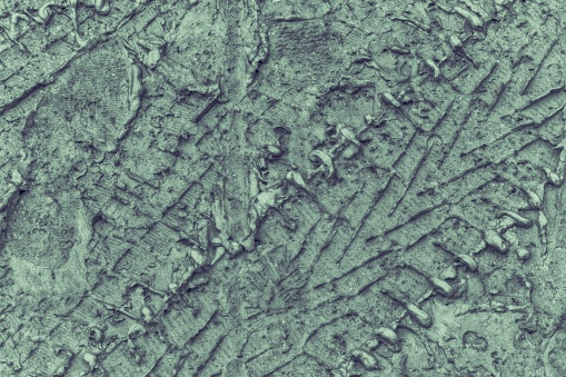 istock Mud texture or wet Neutral Gray colored soil as natural organic clay and geological sediment mixture 942740010