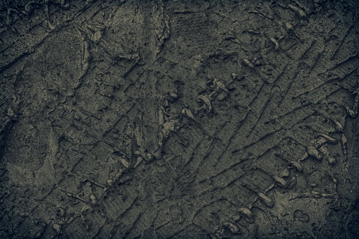 istock Mud texture or wet soil as natural organic clay and geological sediment mixture 947287294