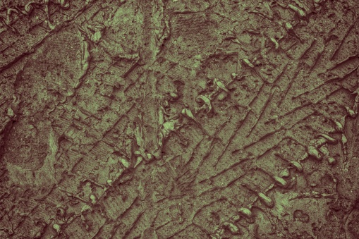 istock Mud texture or wet soil as natural organic clay and geological sediment mixture 953092228