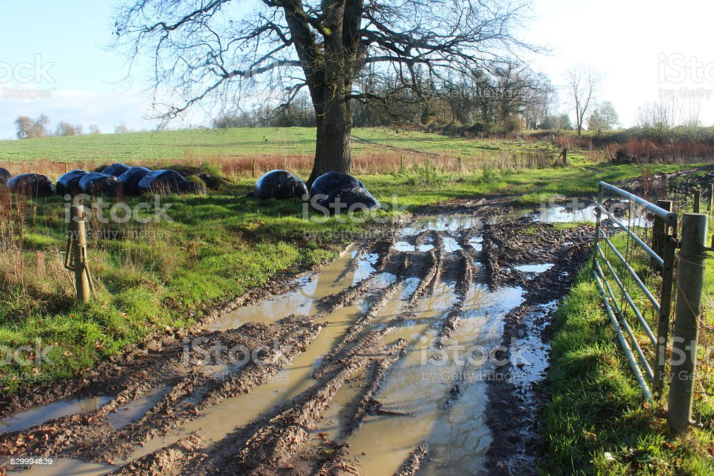 Muddy country lane / road / track, puddles next to farm field stock photo