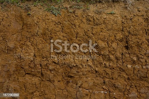 Close-up showing a deep cross-section of soil.
