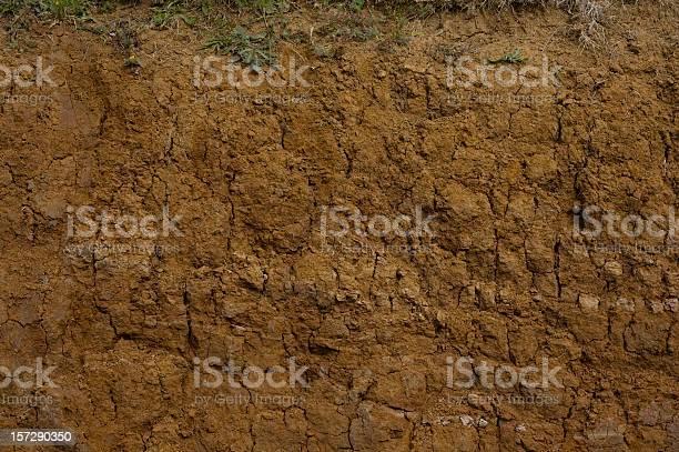 Muddy cross section closeup picture id157290350?b=1&k=6&m=157290350&s=612x612&h=zcqbzccbenog9g12wuuiunk9nc0d2jeapklgu6uoyus=