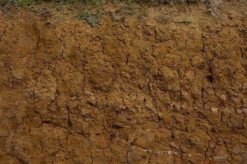 Muddy Cross Section Closeup Stok Fotoğraflar & Alt kısım'nin Daha Fazla Resimleri