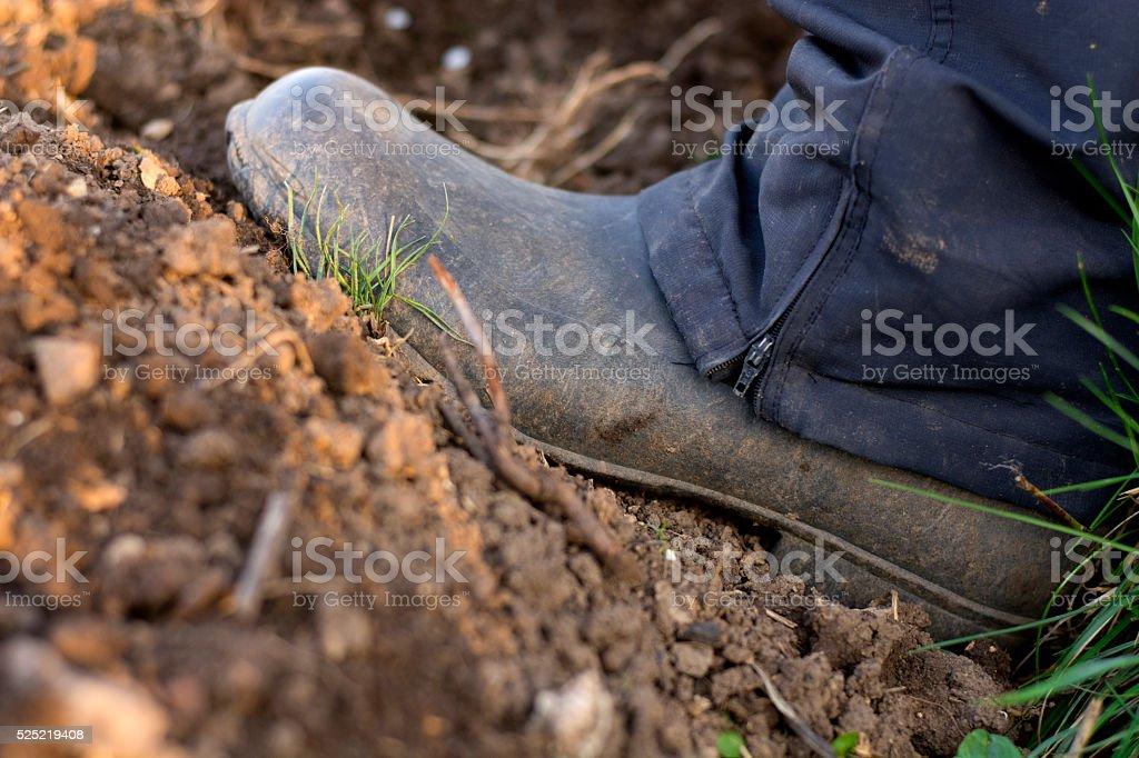 Muddy gardening boot stock photo