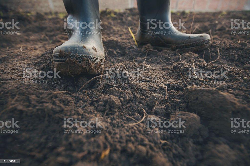 Muddy gardening boots stock photo