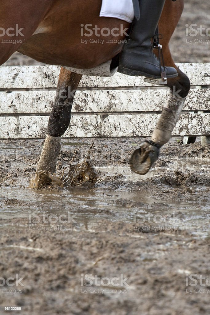 Muddy riding ground royalty-free stock photo
